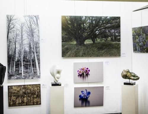 Rogier Jonk – gallery en art café
