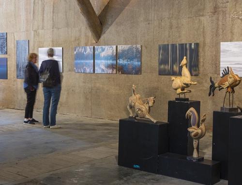 Kunstmanifestaties 2019